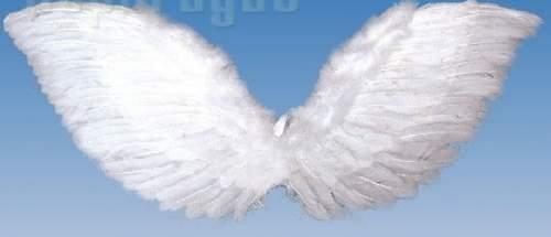 angyalszárny / Fogtündér szárny - 45 x 80 cm