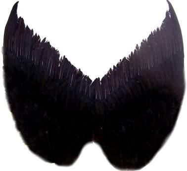 angyalszárny 62 x 56 cm fekete