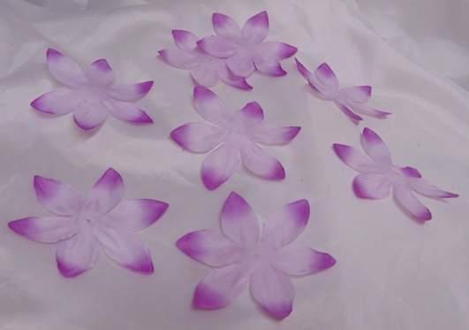 hawaii virág ciklámen, 11 cm-s (kb 25 db)