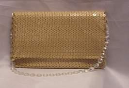 flitteres kistáska (20 cm * 13 cm)